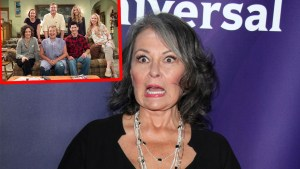 roseanne barr mental illness battle