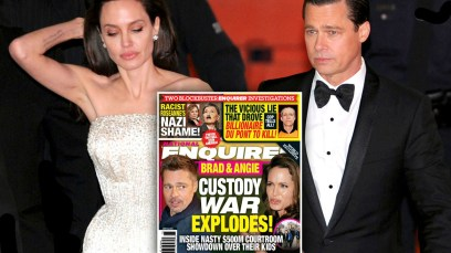 angelina jolie brad pitt divorce child custody battle