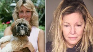 heather locklear stalker rehab meltdowns arrest