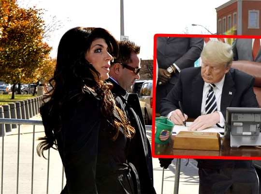teresa giudice joe donald trump pardon