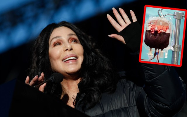 cher dying diva secret cure comeback