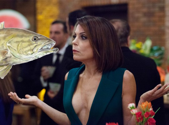 bethenny frankel allergy fish flight