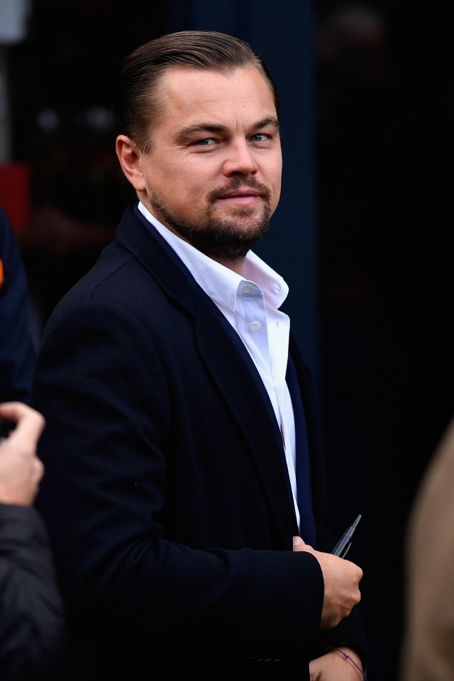 Leonardo DiCaprio Fell for Dirty Money Scam