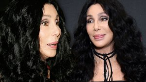 Cher's Deep-Freeze Dream