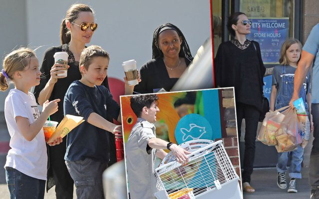 Angelina Jolie and Brad Pitt's Kids Building A Zoo