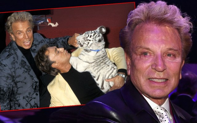 Magic Man Siegfried Fischbacher's Heart Op Miracle Siegfried and Roy